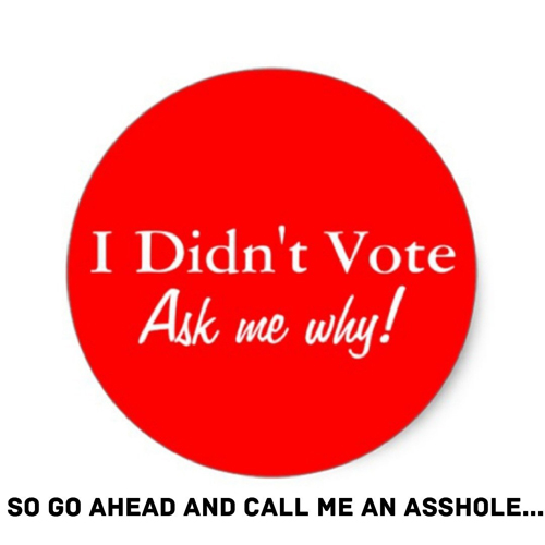 Why I Did Not Vote…
