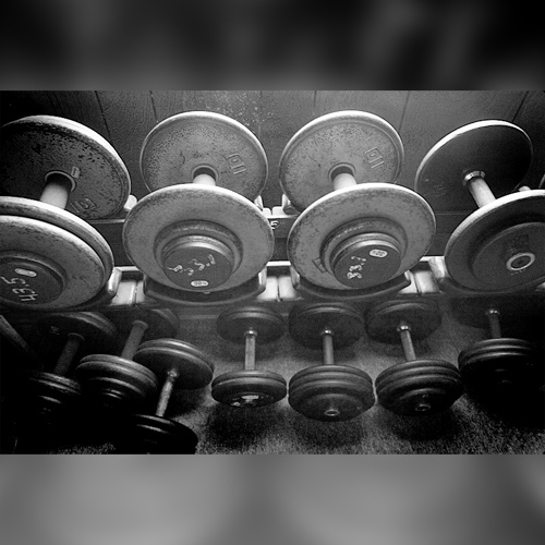 a lifter's diary… Volume 3