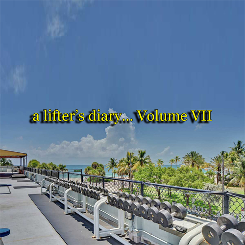 a lifter's diary… Volume 7